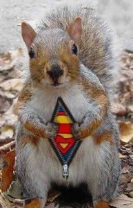 supersquirrel3